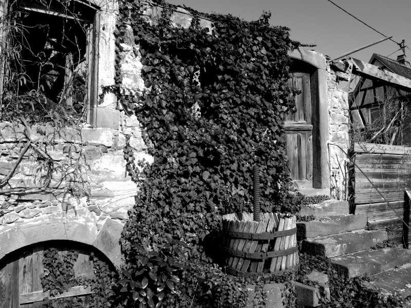 La maison en ruine