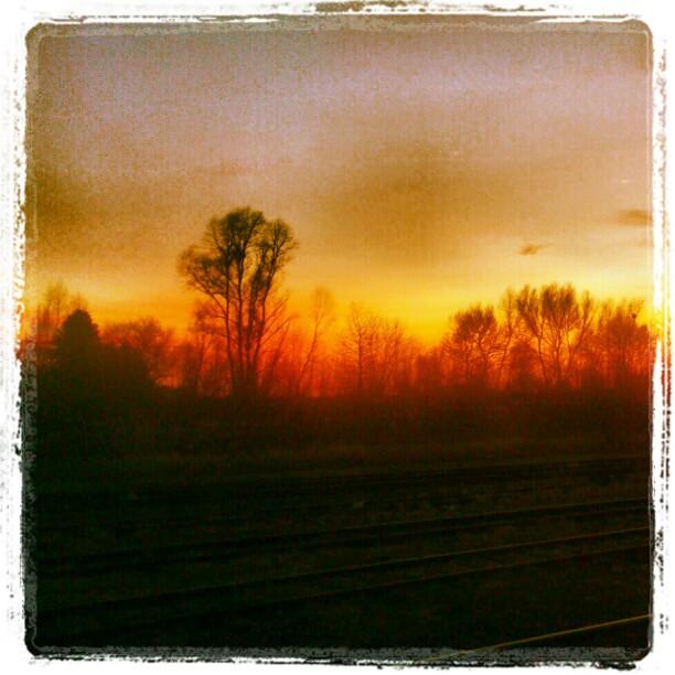 [Instagram] Feu de forêt ? Non juste un couché de soleil :)#alsace #ter