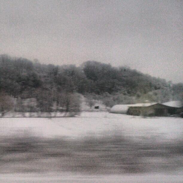 [Instagram] Cette photo n'est pas en noir et blanc. Il y a 5 cm de neige. #alsace #ter #neige