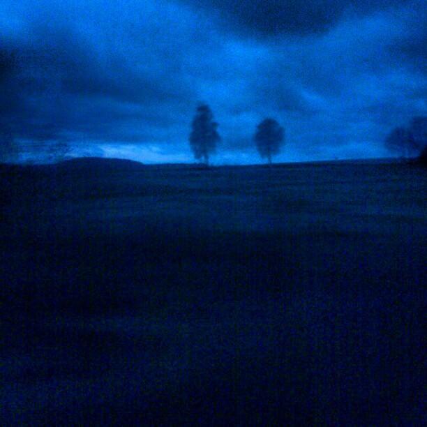 [Instagram] Le début de la dernière journée de l'année. L'heure bleue matinale sous un ciel menaçant. #alsace #nofilter