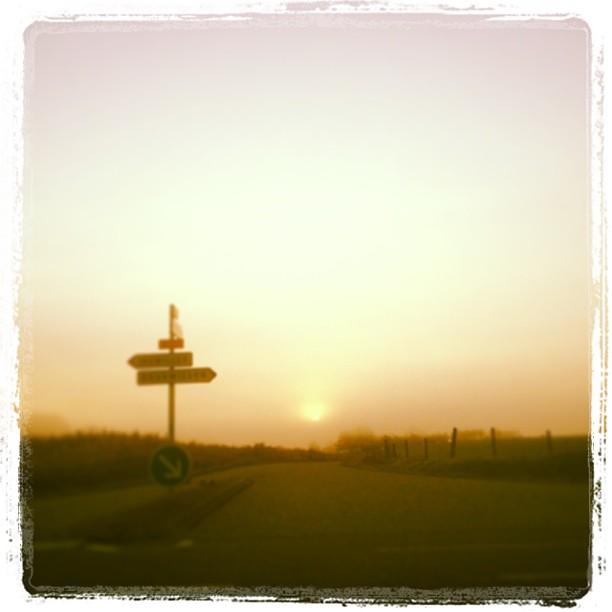 [Instagram] Ce matin, le brouillard voile le soleil.