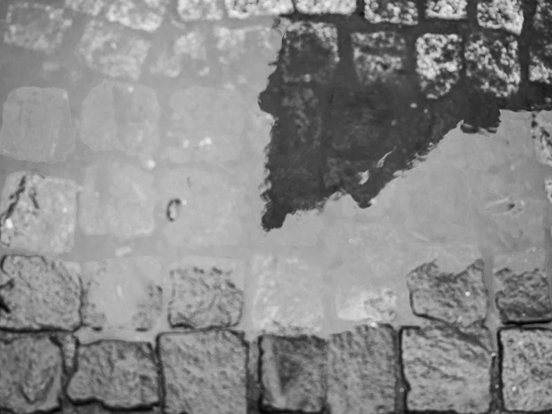 la flèche unique de Notre Dame dans une marre d'eau