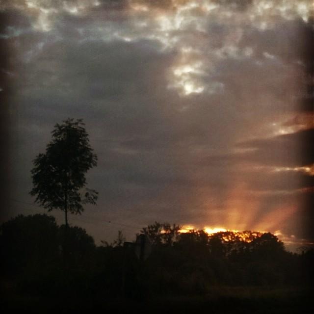 [Instagram] Levé de soleil ce matin sur l'Alsace