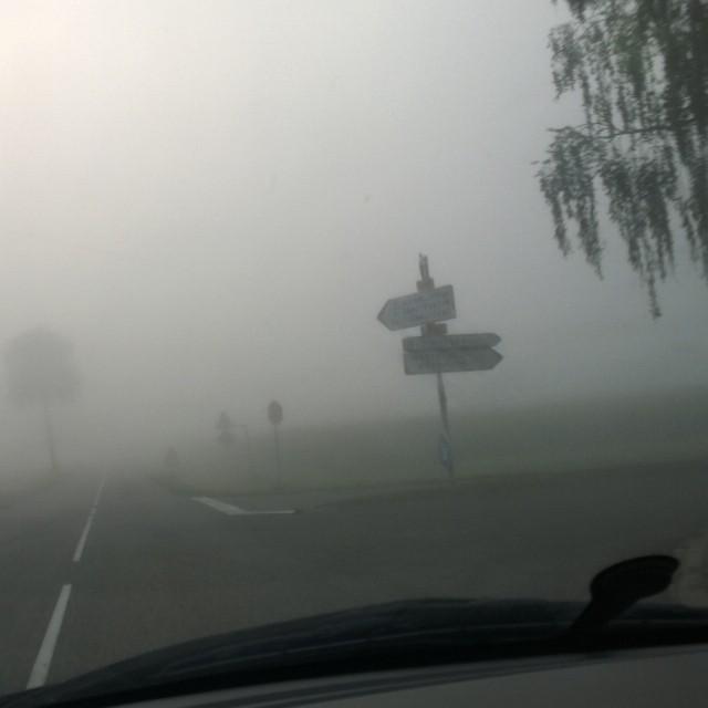 [Instagram] Sommes nous encore en été ? #brouillard sur l'#alsace #nofilter #nocontrast