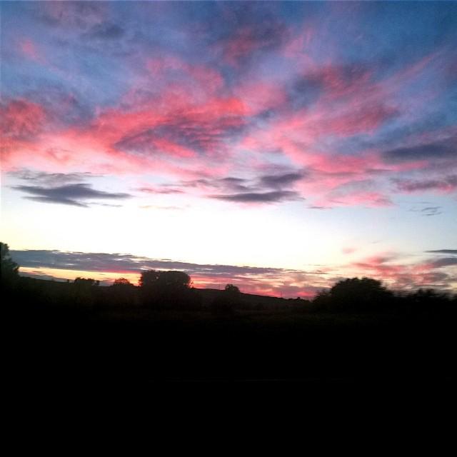 [Instagram] Couché de Soleil rouge vif depuis le #train #ter #alsace #igersfrance #igersstrasbourg #sunset