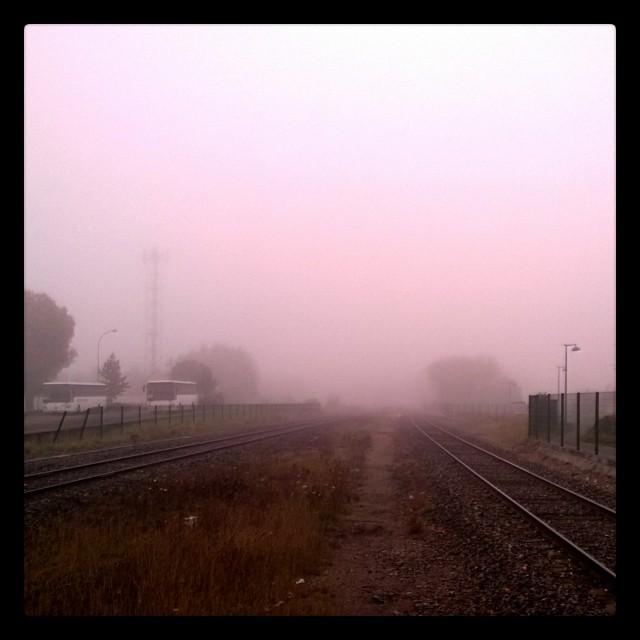 [Instagram] C'est brumeux ce matin. N'oubliez pas, bous avons changé d'heure.