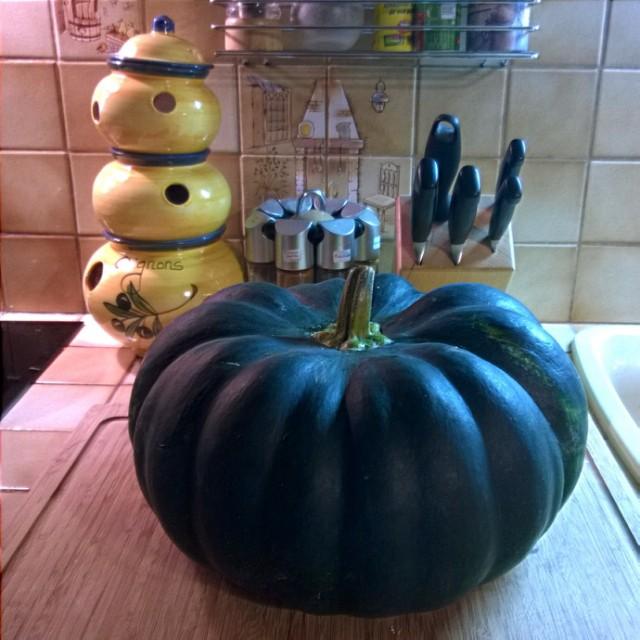 [Instagram] C'est halloween ! Ma citrouille est déguisée en tomate mutante pas mure.