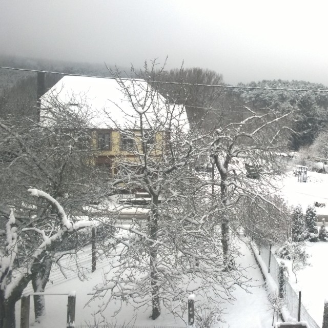 [Instagram] Nous avons enfin un peu de neige :)