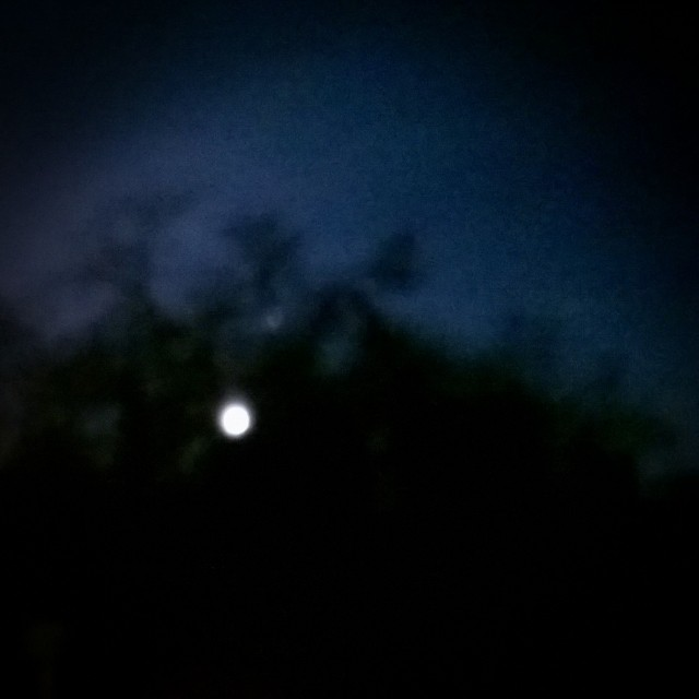 [Instagram] Pleine lune inspirée par Tim Burton.