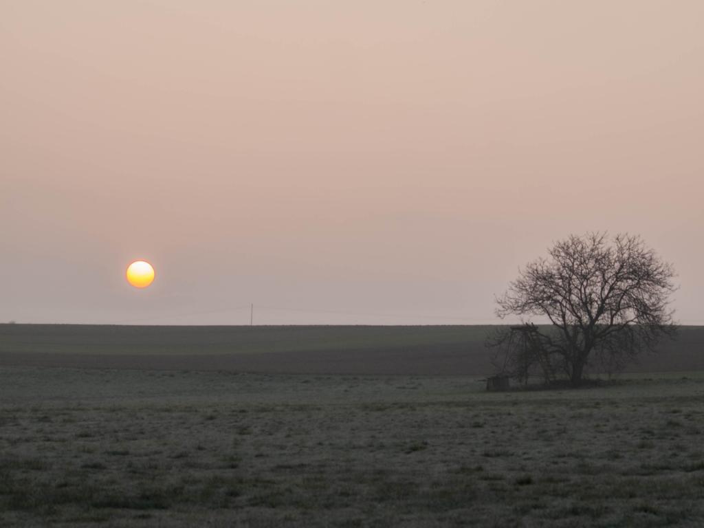 Levé de soleil près de Bouxwiller