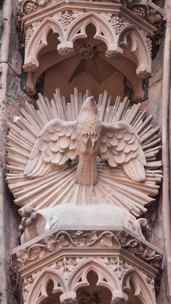 Cathedrale de Strasbourg au 300mm - Un oiseau divin