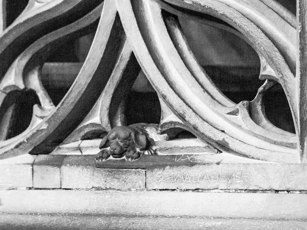 Cathedrale de Strasbourg au 300mm - Le petit chien de Geiler patiné par les mains des visiteurs
