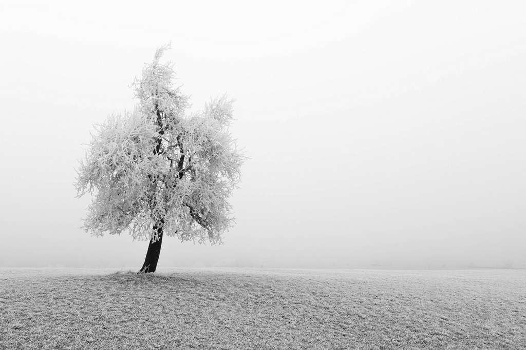 Une photo de saison